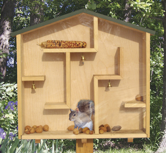 Where to get homemade squirrel proof bird feeder plans for How to get your house plans